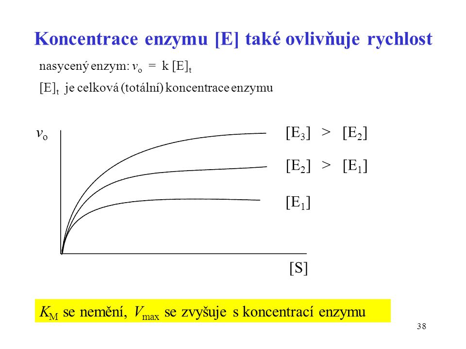 Koncentrace enzymu [E] také ovlivňuje rychlost